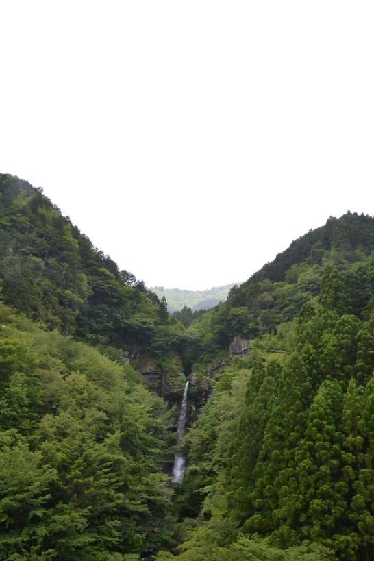 大瀧 おおたび いの町 滝