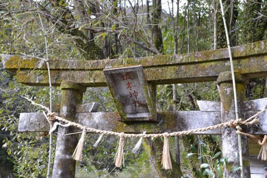 梅 高知 南国市 才谷龍馬公園