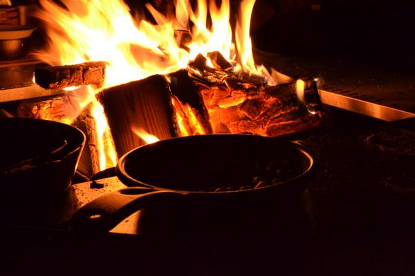 キャンプ 焚き火 薪