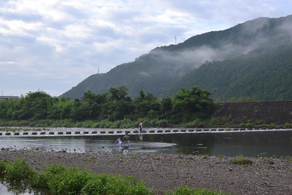 高知 須崎 新荘川 キャンプ