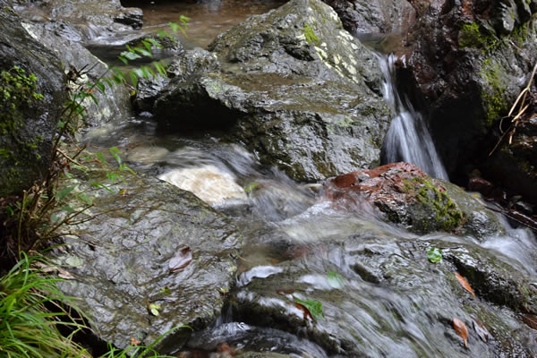 高知市 滝 山姥の滝