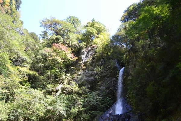 高知 仁淀川町 安居渓谷 滝 紅葉 飛龍の滝