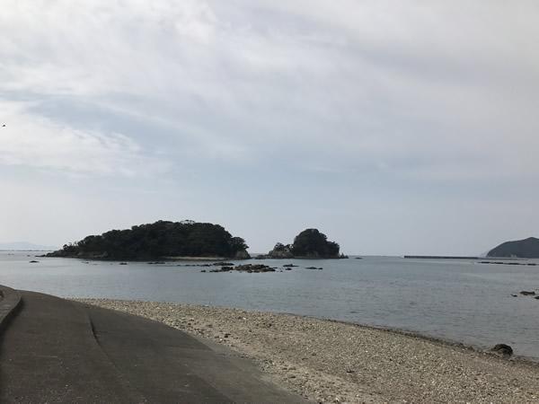 キャンプ 高知 釣り エギング 宿毛 大月 咸陽島 国民宿舎 椰子