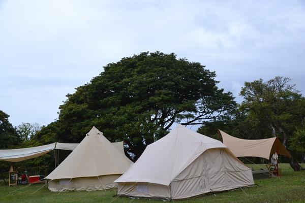 高知 室戸 キャンプ 夕陽ケ丘キャンプ場 夕日が丘キャンプ場 196