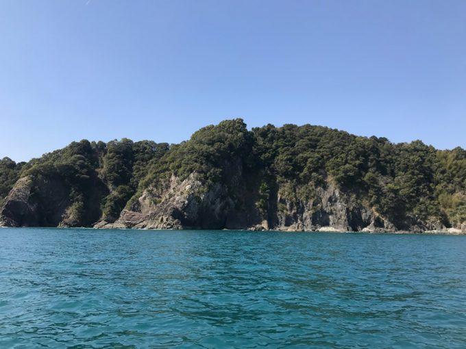 高知 須崎 船釣り
