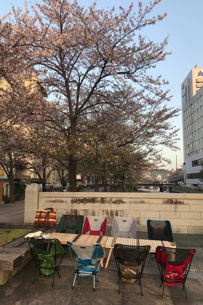 高知 堀川 桜 花見
